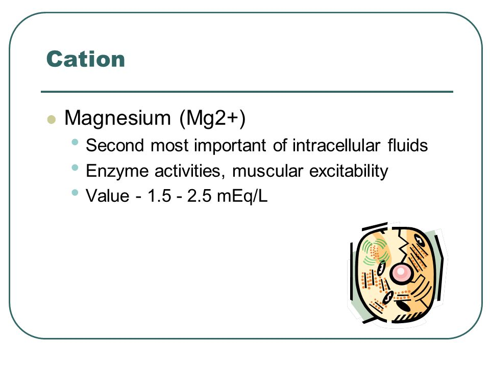 Cation Magnesium (Mg2+) Second most important of intracellular fluids