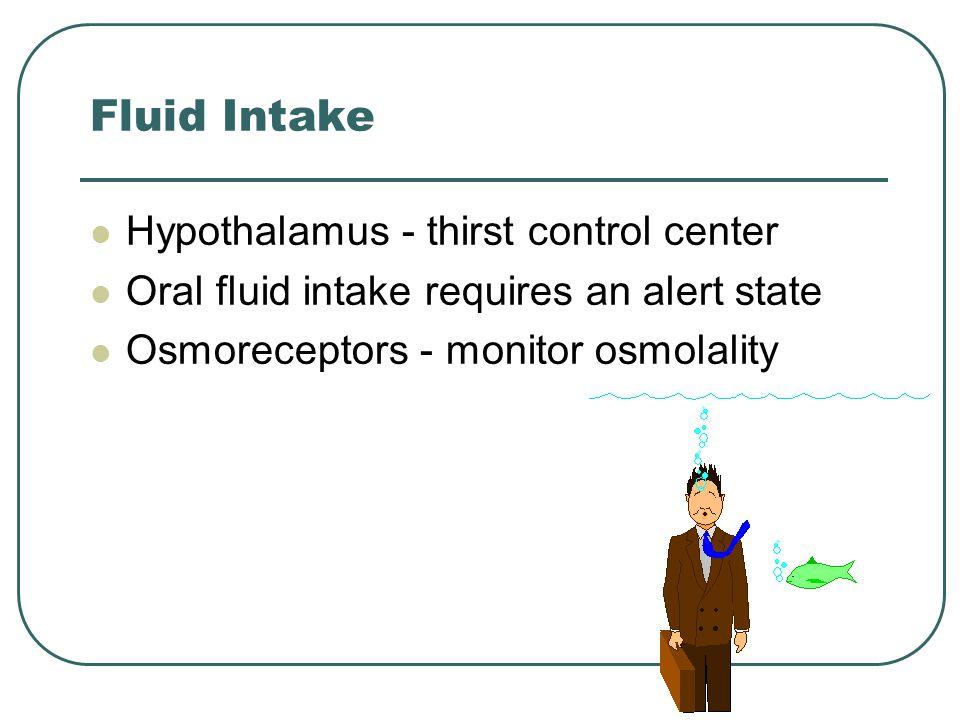 Fluid Intake Hypothalamus - thirst control center