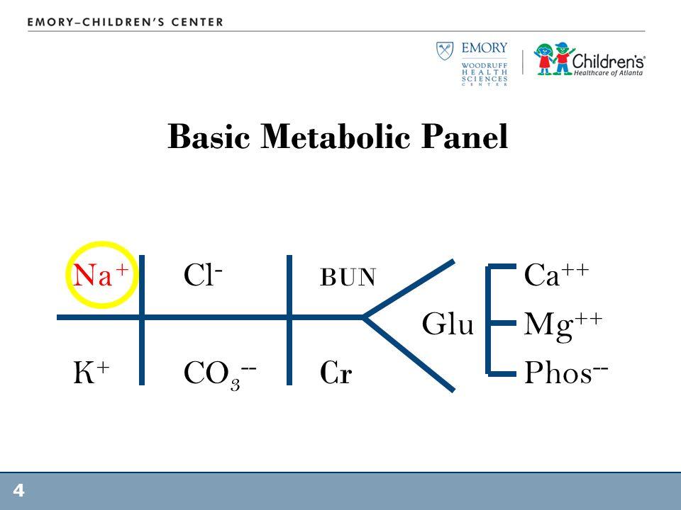 Basic Metabolic Panel Na + Cl- BUN Ca++ Glu Mg++ K+ CO3-- Cr Phos--