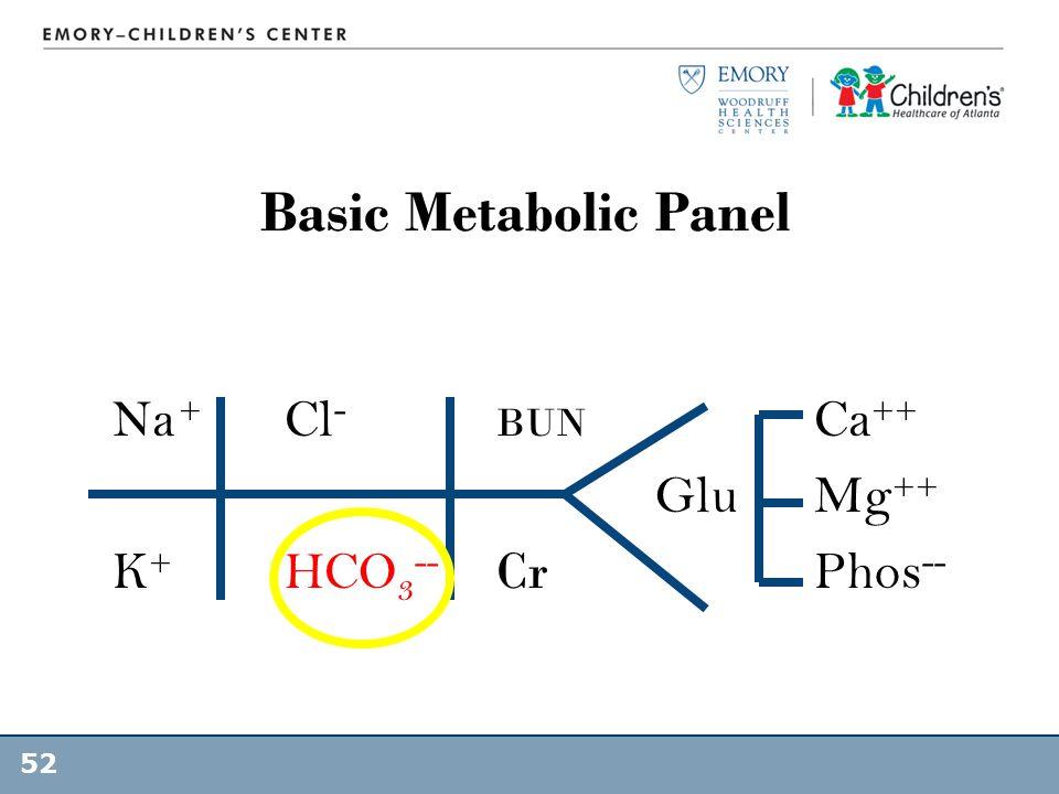 Basic Metabolic Panel Na + Cl- BUN Ca++ Glu Mg++ K+ HCO3-- Cr Phos--