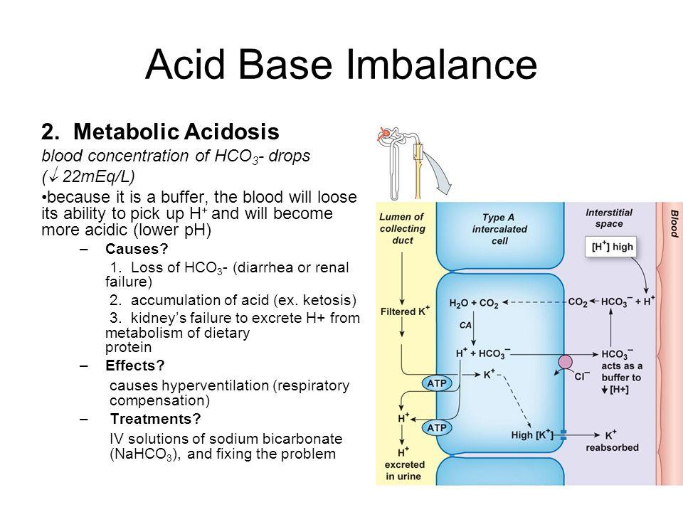 Acid Base Imbalance Metabolic Acidosis