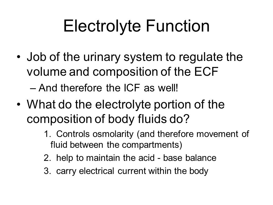 Electrolyte Function Job of the urinary system to regulate the volume and composition of the ECF. And therefore the ICF as well!