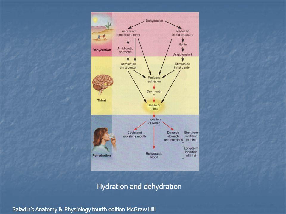 Hydration and dehydration