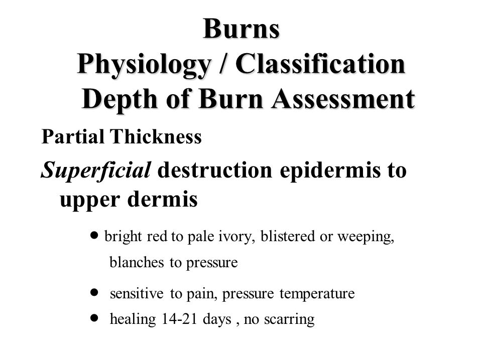 Burns Physiology / Classification Depth of Burn Assessment