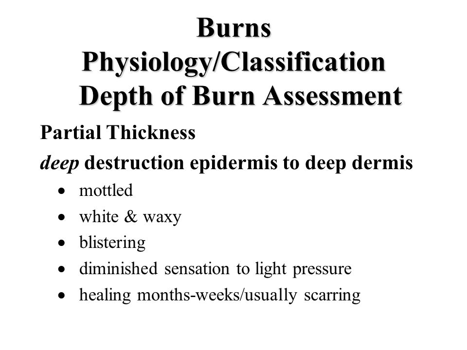 Burns Physiology/Classification Depth of Burn Assessment