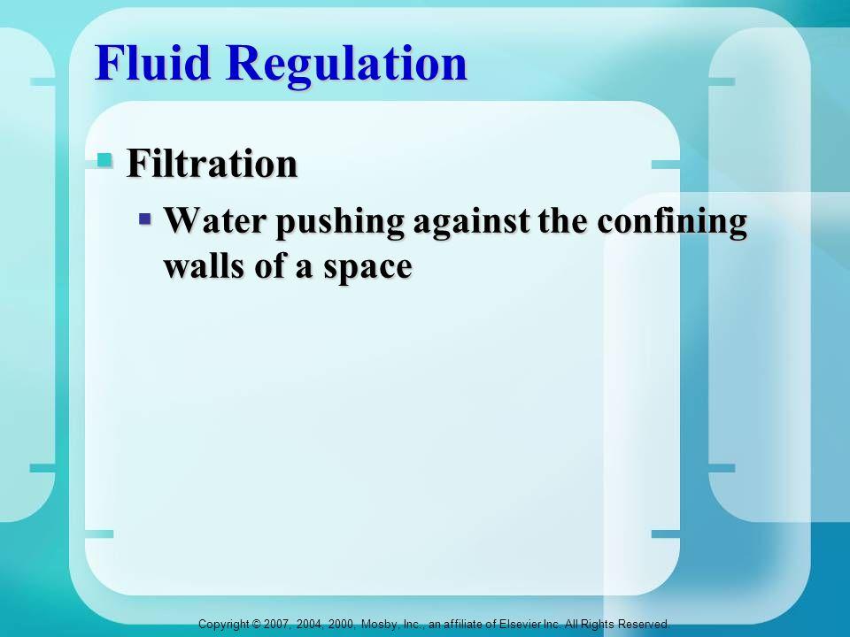 Fluid Regulation Filtration