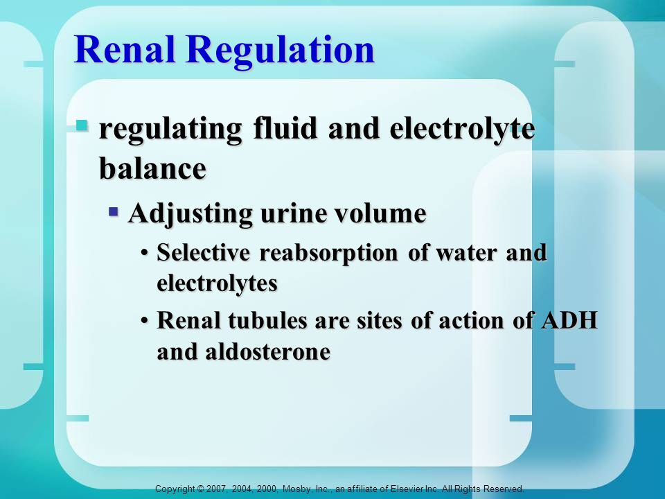 Renal Regulation regulating fluid and electrolyte balance