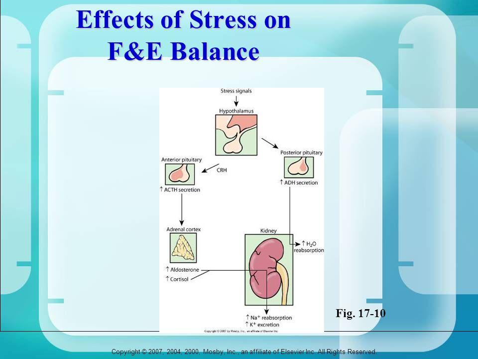Effects of Stress on F&E Balance