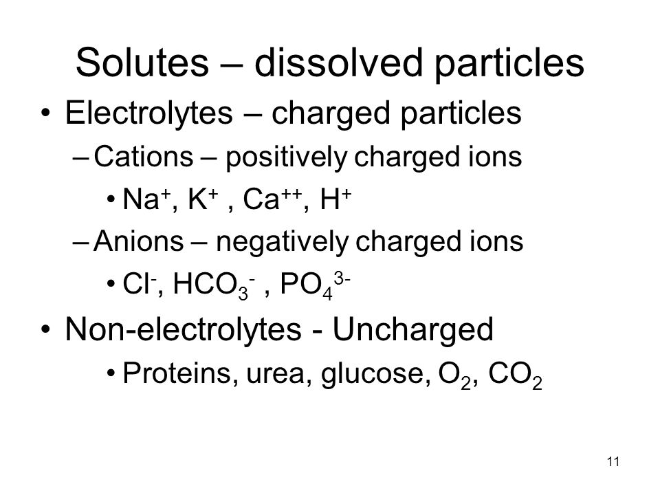 Solutes – dissolved particles