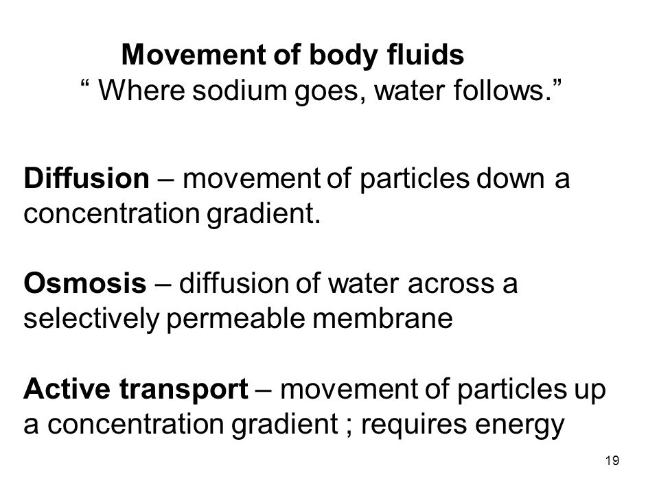Movement of body fluids Where sodium goes, water follows.