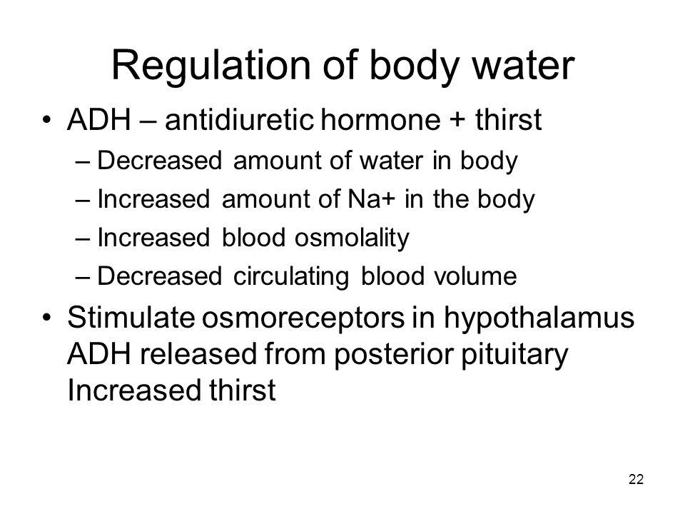 Regulation of body water