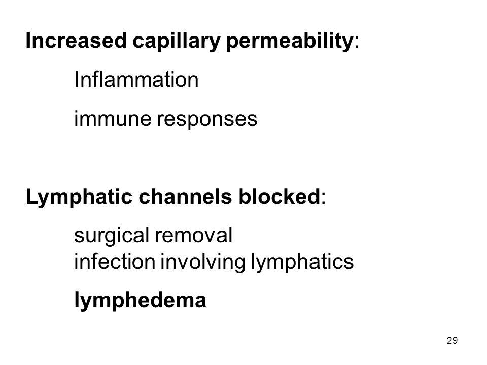 Increased capillary permeability: