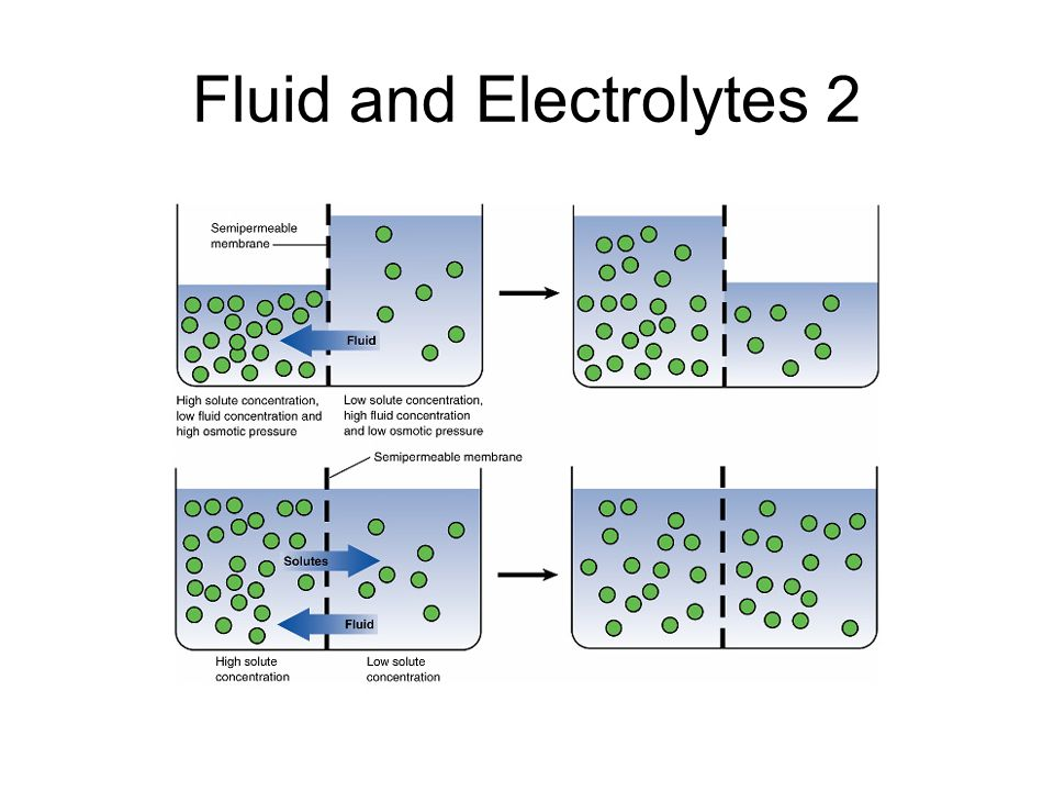 Fluid and Electrolytes 2