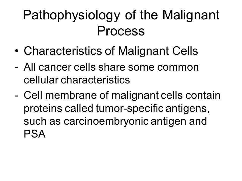 Pathophysiology of the Malignant Process