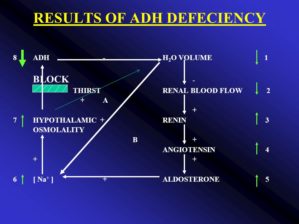RESULTS OF ADH DEFECIENCY