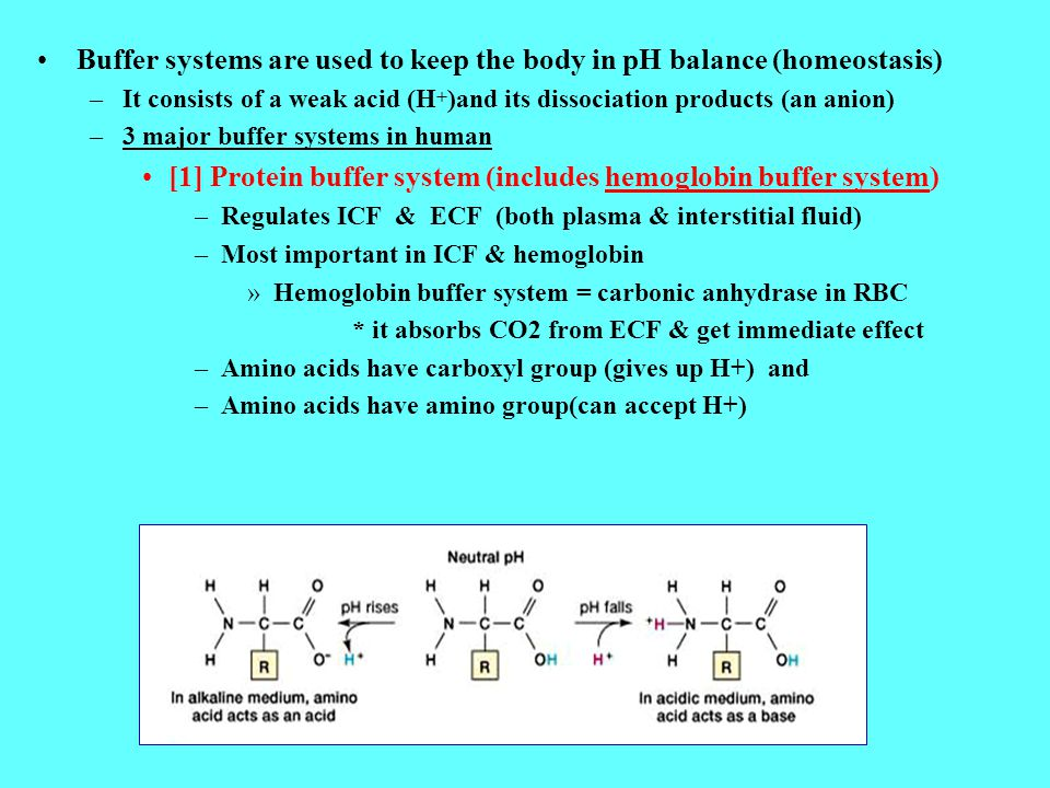 Buffer systems are used to keep the body in pH balance (homeostasis)
