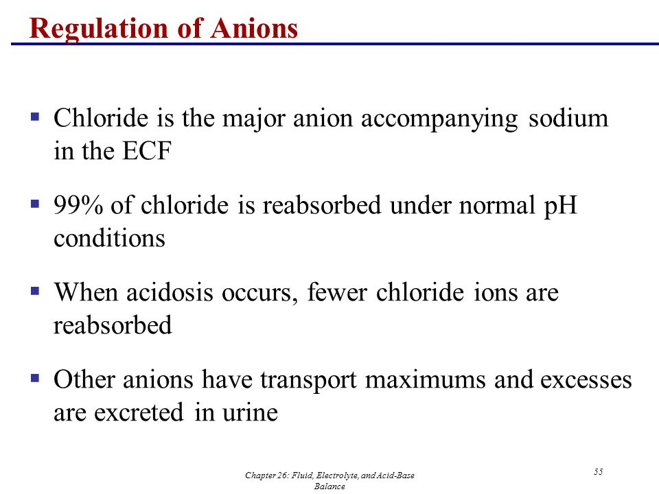 urinary fluid electrolytes essay