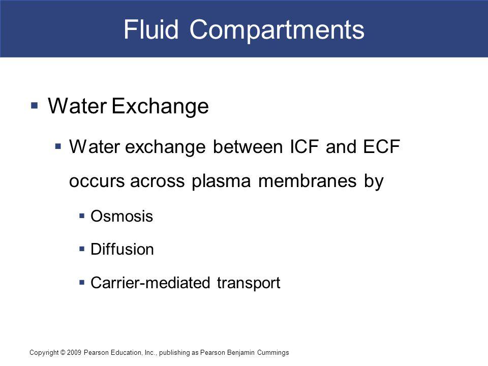 Fluid Compartments Water Exchange
