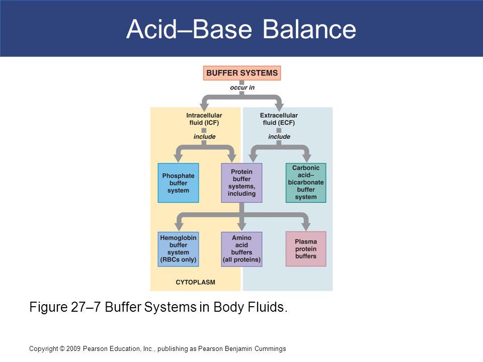 Acid–Base Balance Figure 27–7 Buffer Systems in Body Fluids.