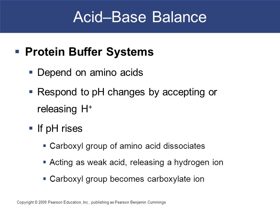 Acid–Base Balance Protein Buffer Systems Depend on amino acids