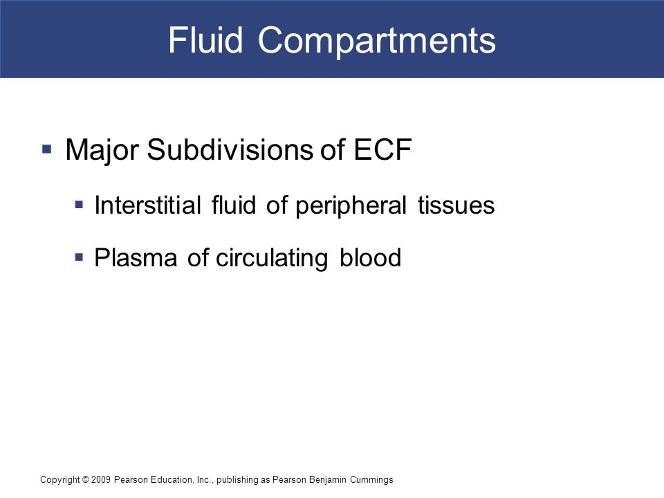 Fluid Compartments Major Subdivisions of ECF