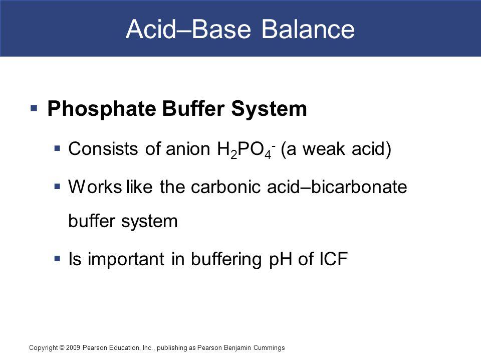 Acid–Base Balance Phosphate Buffer System