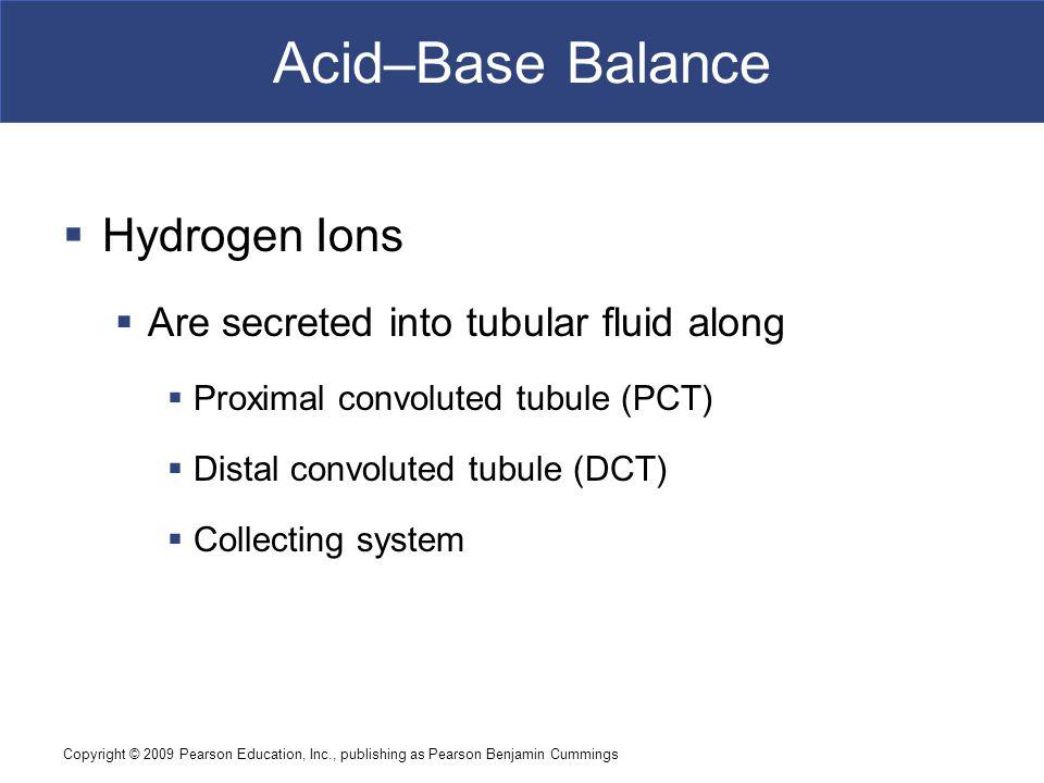 Acid–Base Balance Hydrogen Ions Are secreted into tubular fluid along