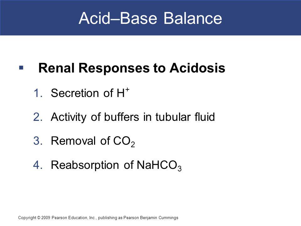 Acid–Base Balance Renal Responses to Acidosis Secretion of H+