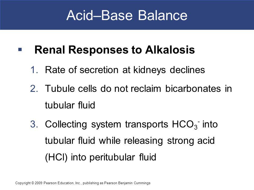 Acid–Base Balance Renal Responses to Alkalosis