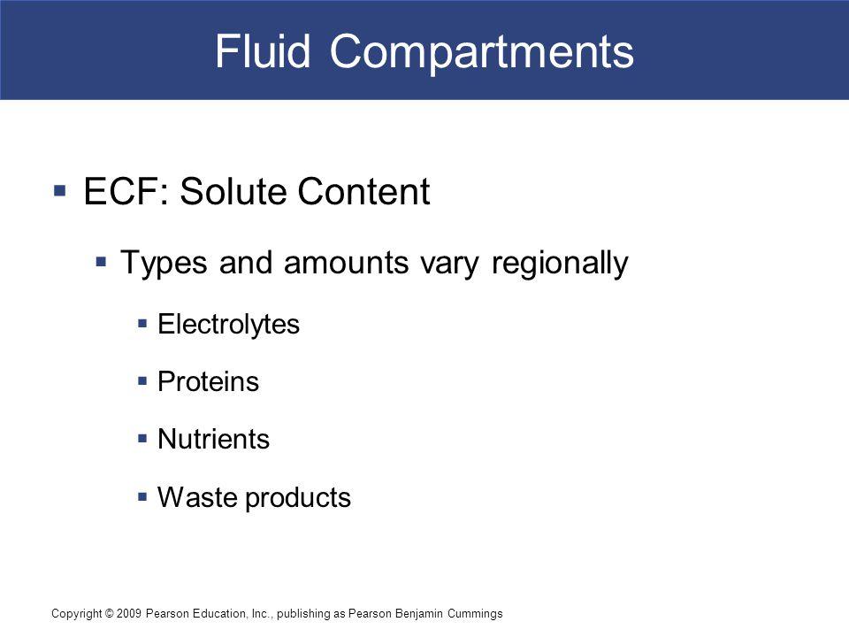 Fluid Compartments ECF: Solute Content