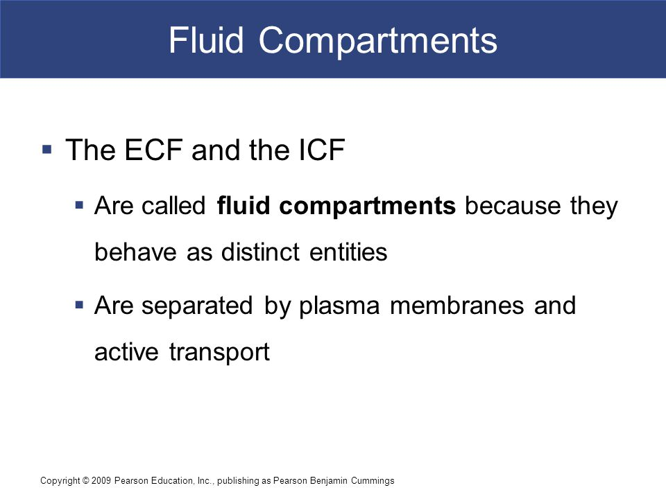Fluid Compartments The ECF and the ICF