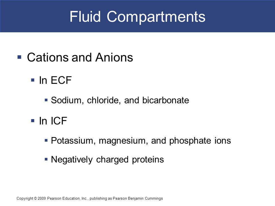 Fluid Compartments Cations and Anions In ECF In ICF