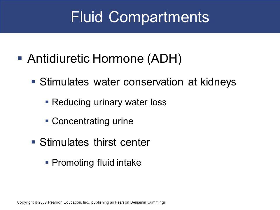 Fluid Compartments Antidiuretic Hormone (ADH)