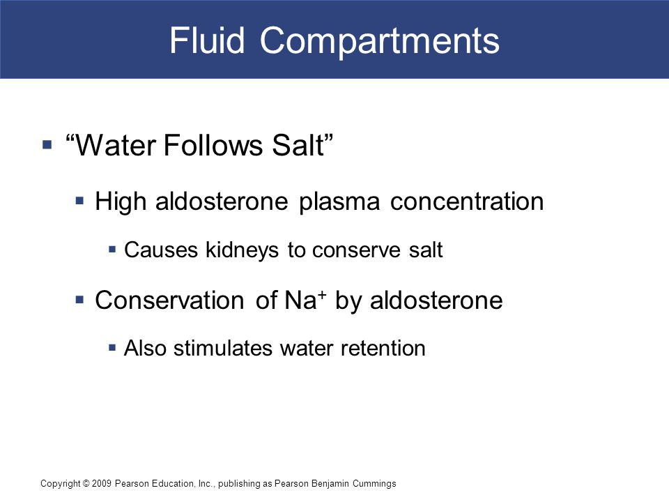 Fluid Compartments Water Follows Salt
