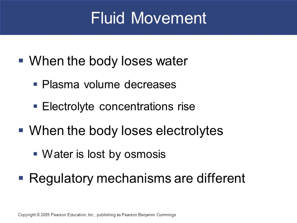 Fluid Movement When the body loses water
