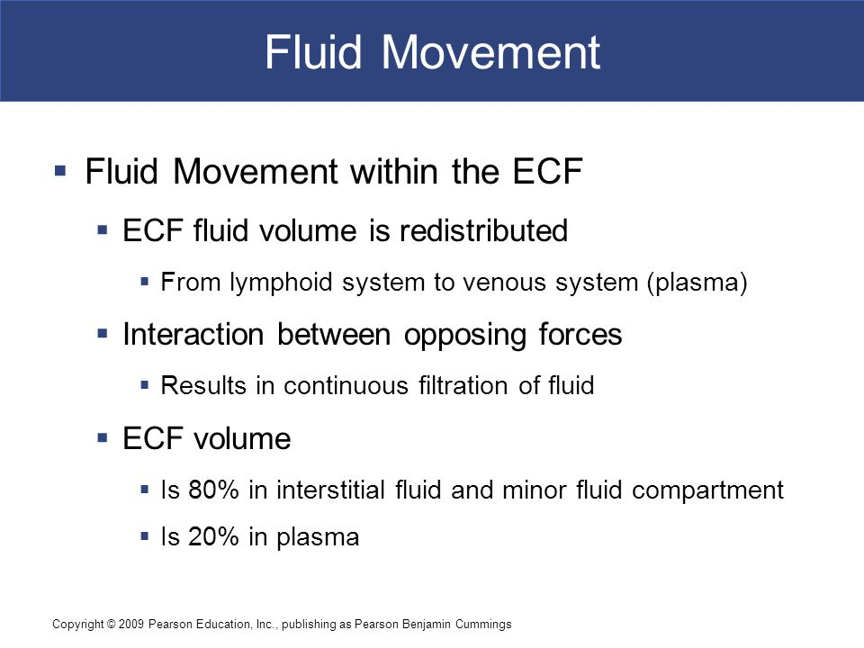 Fluid Movement Fluid Movement within the ECF