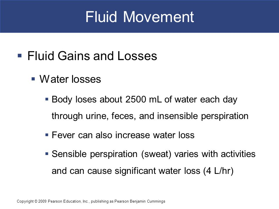 Fluid Movement Fluid Gains and Losses Water losses