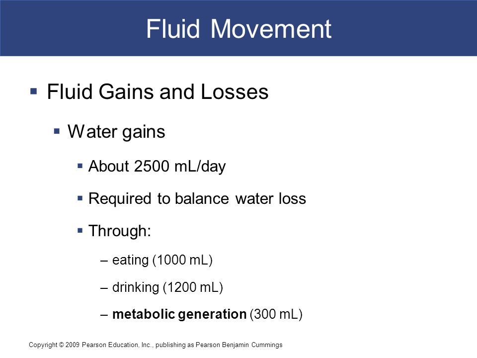 Fluid Movement Fluid Gains and Losses Water gains About 2500 mL/day