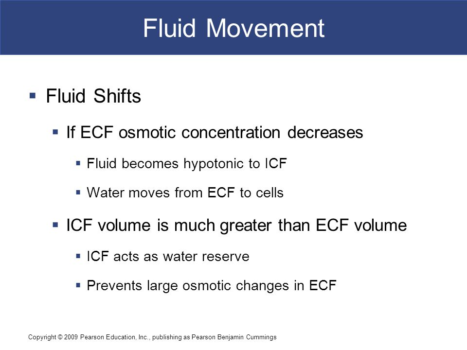 Fluid Movement Fluid Shifts If ECF osmotic concentration decreases