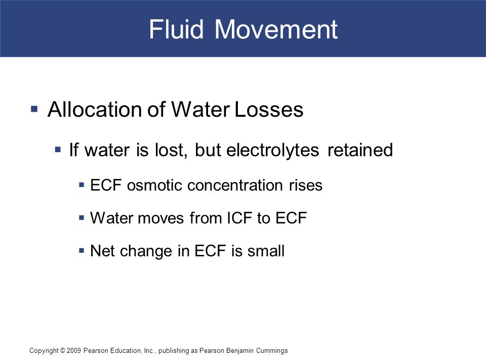 Fluid Movement Allocation of Water Losses