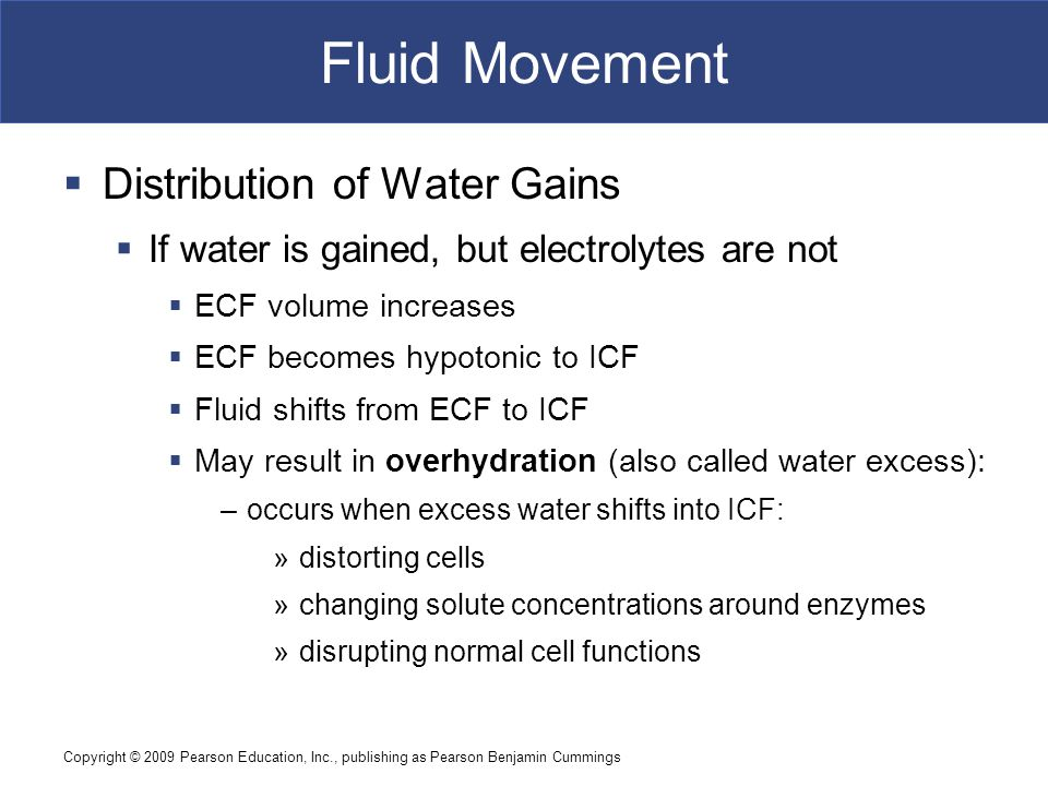 Fluid Movement Distribution of Water Gains