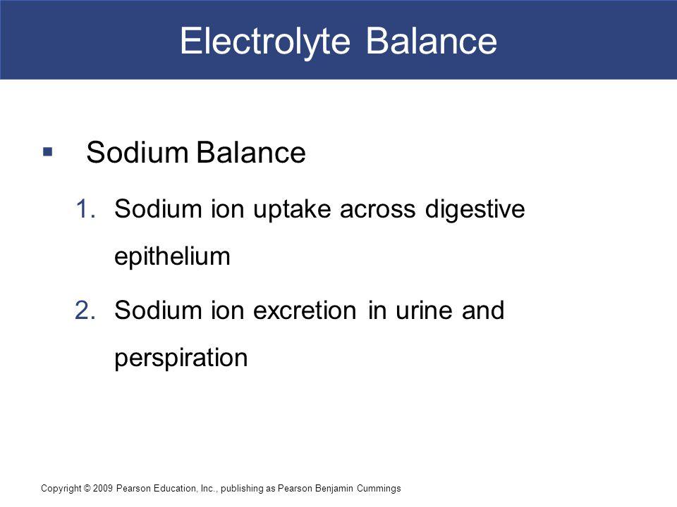 Electrolyte Balance Sodium Balance
