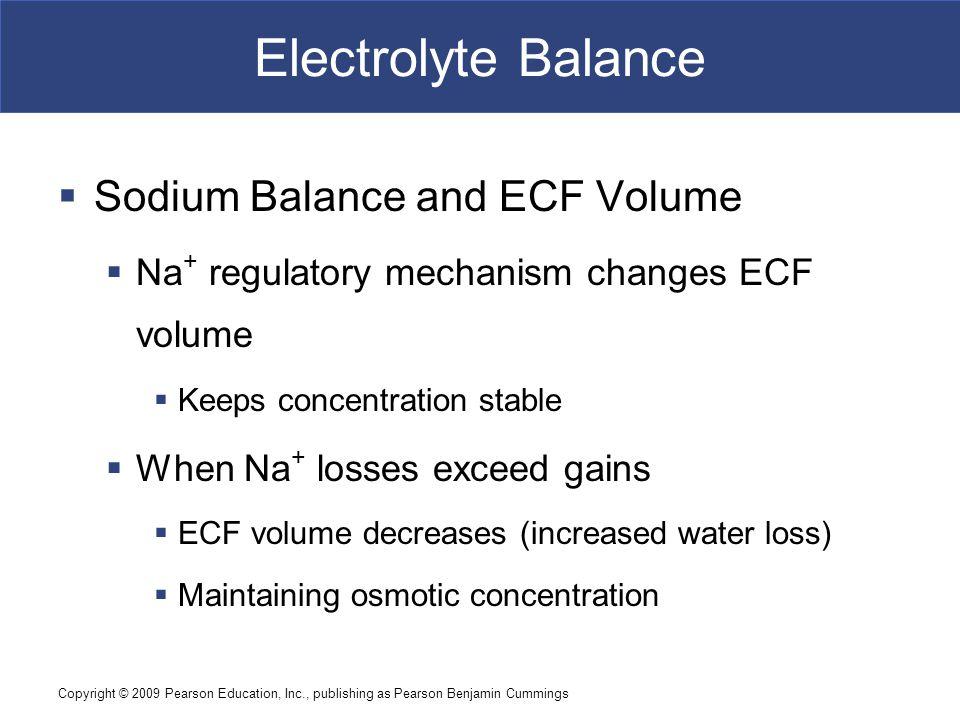 Electrolyte Balance Sodium Balance and ECF Volume