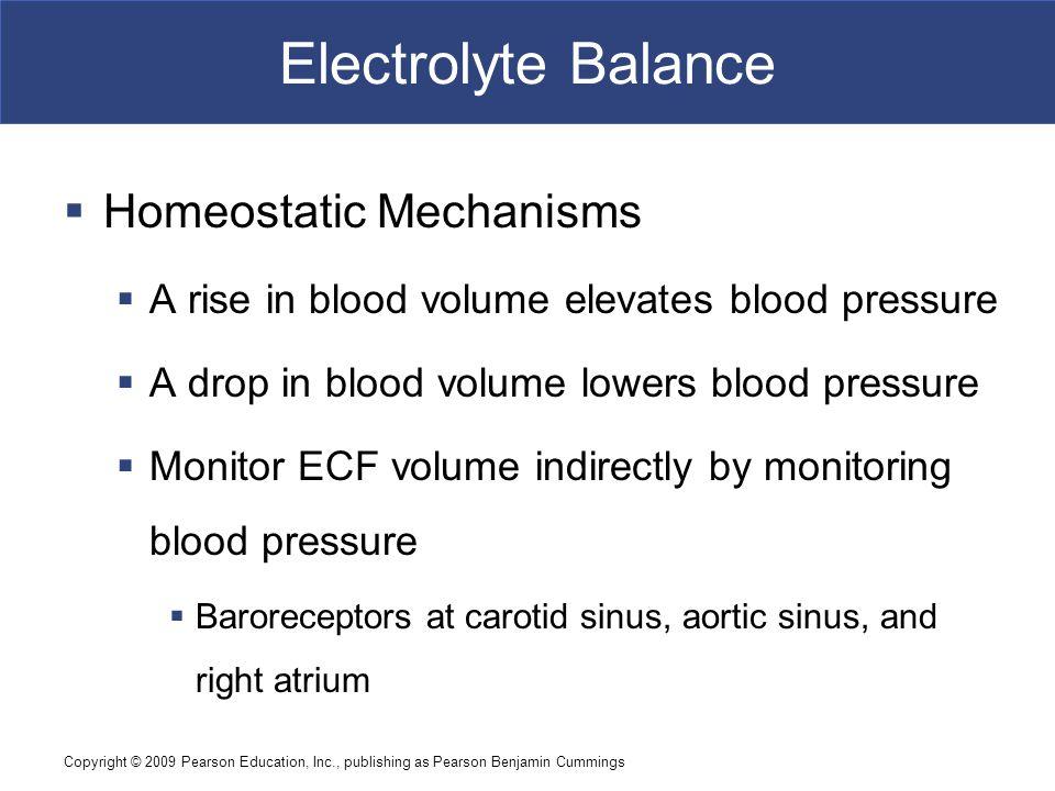 Electrolyte Balance Homeostatic Mechanisms