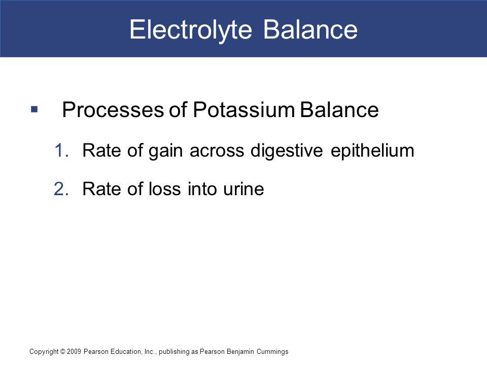 Electrolyte Balance Processes of Potassium Balance