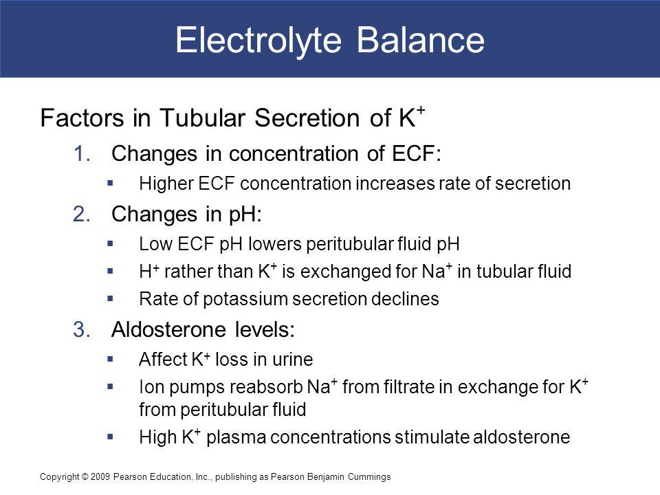 Electrolyte Balance Factors in Tubular Secretion of K+