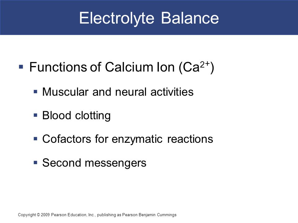 Electrolyte Balance Functions of Calcium Ion (Ca2+)