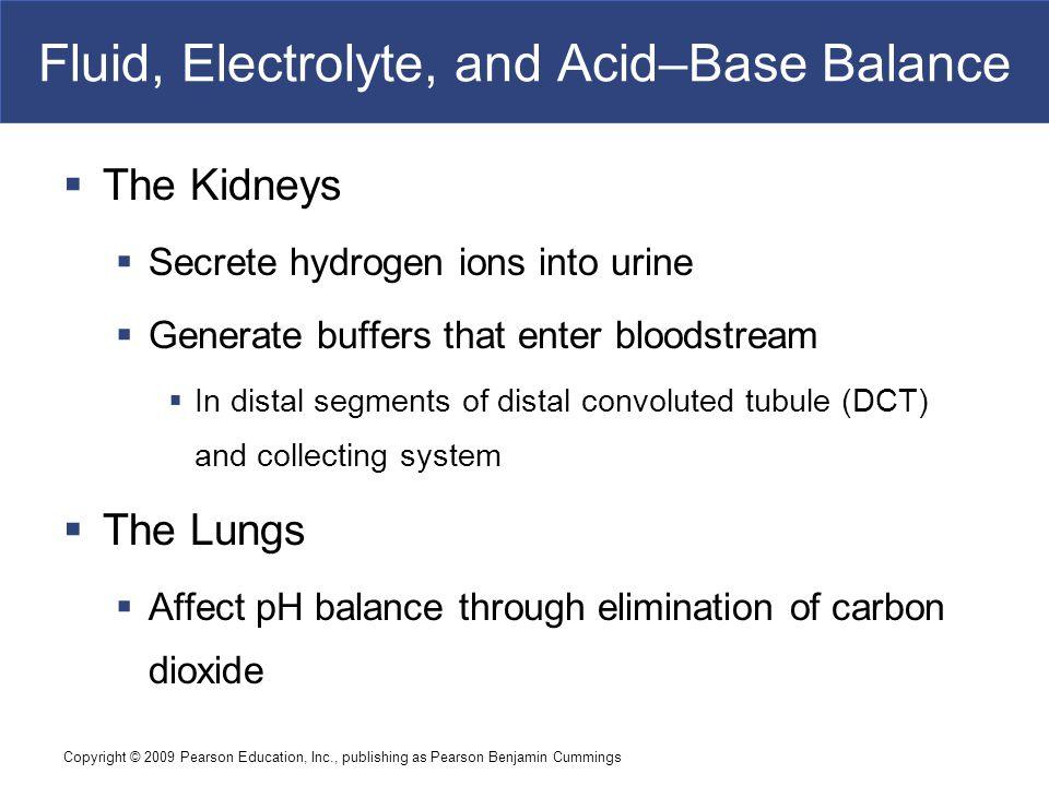 Fluid, Electrolyte, and Acid–Base Balance