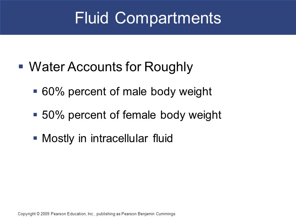 Fluid Compartments Water Accounts for Roughly