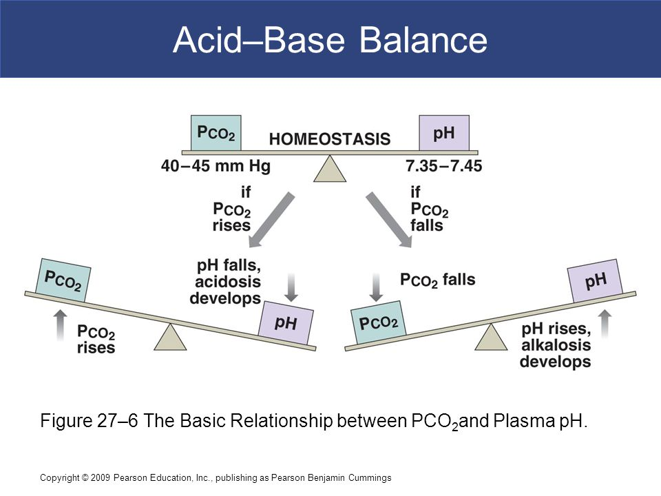 Acid–Base Balance Figure 27–6 The Basic Relationship between PCO2and Plasma pH.
